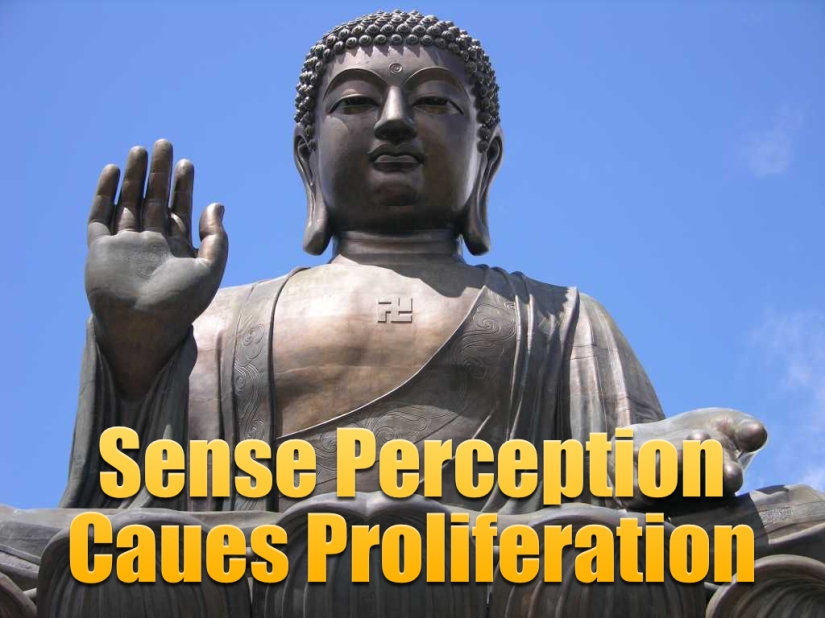 """Perception Causes Proliferation"""